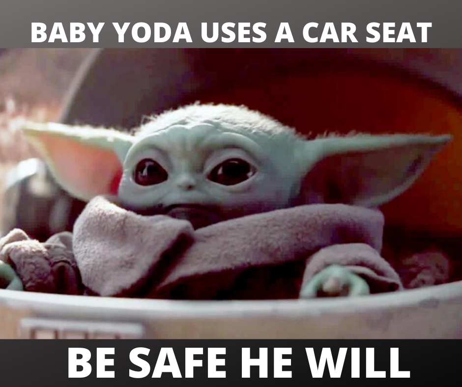 Keep your kids safe like baby Yoda!  Have a question or need some help before heading out of town for the holidays?  Send us a message or email savingprincewilliamslittles@gmail.com – always happy to help!
